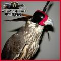 鹰具帽子/鹰帽/鹰具遮光罩/鹰帽子鹰眼罩/隼帽鹰头盔/暗线荷兰式